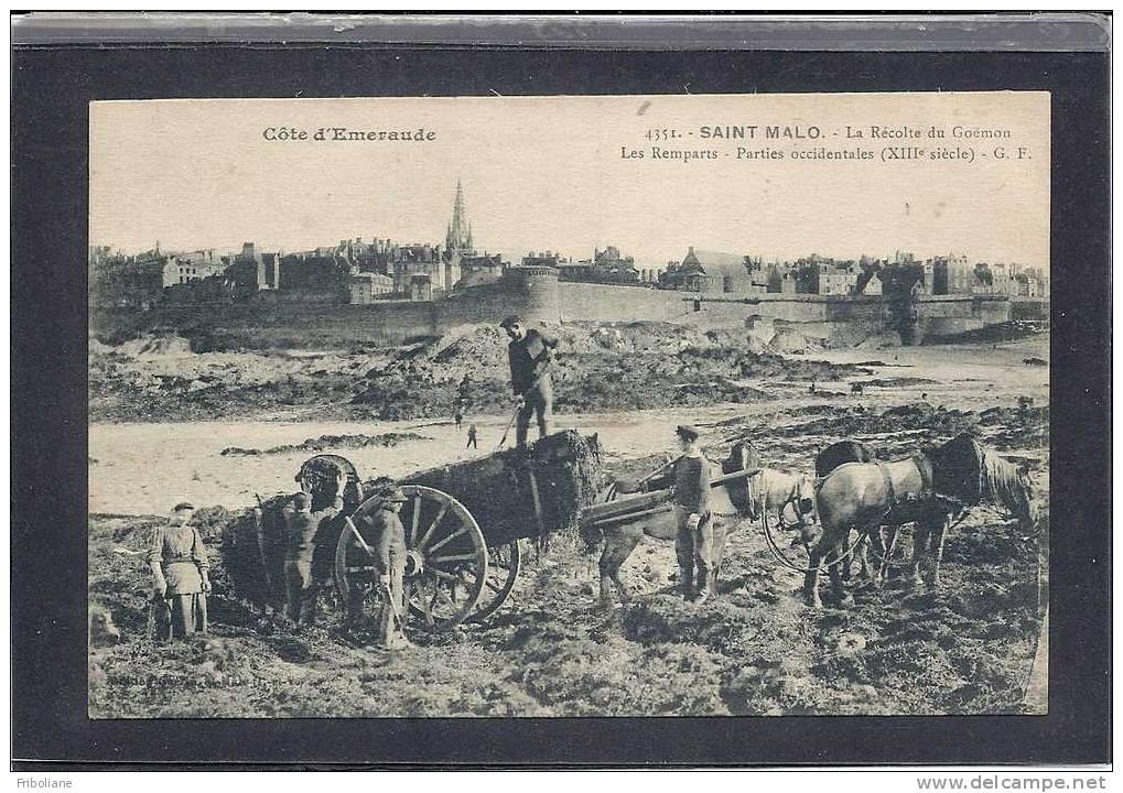 Le ramassage du Goémon sur la grève du Sillon